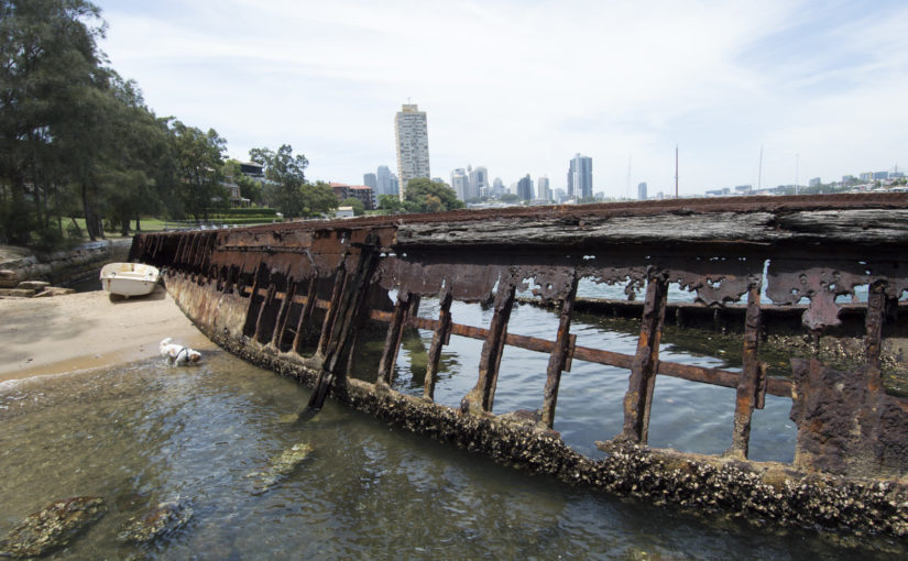 The wreck and ruins of Sawmillers Reserve